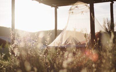 Un verano sin picaduras de mosquitos